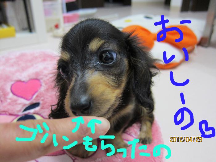 ☆おとまり保育園☆_c0245679_1932597.jpg