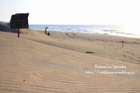 なんちゃって砂丘_d0148187_2227754.jpg