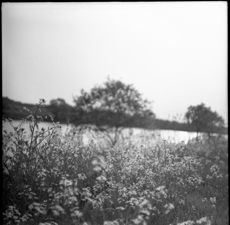 f0161595_1957269.jpg