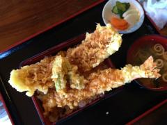 富士五湖ウルトラ_a0036808_2332756.jpg