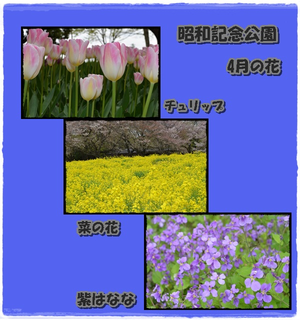 c0223117_19275938.jpg