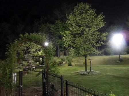 新緑の夜景_d0171630_21275664.jpg
