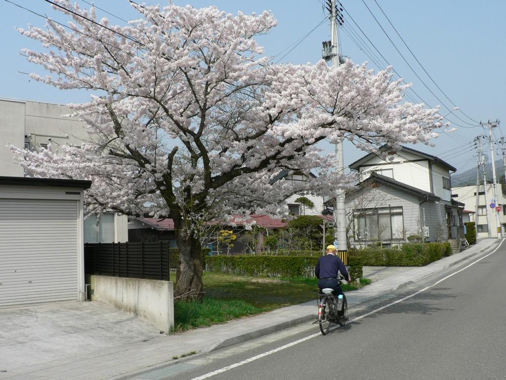 自転車が行く_d0001843_2317264.jpg