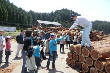 2012春・小国杉森林ツアー「木材市場」_b0112371_17114817.jpg