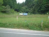 6月7日の田んぼ(月光原小・西根小)_d0247484_9295955.jpg