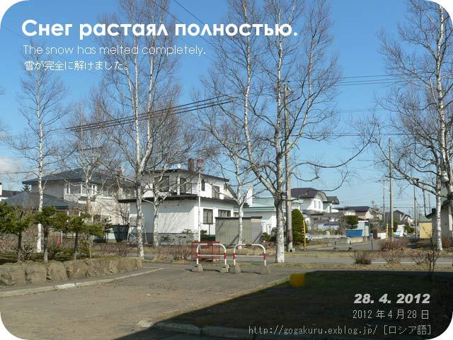 e0132084_005796.jpg