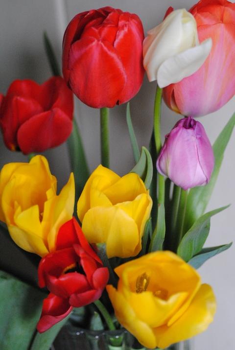 お花のある暮らし_c0195496_14214885.jpg