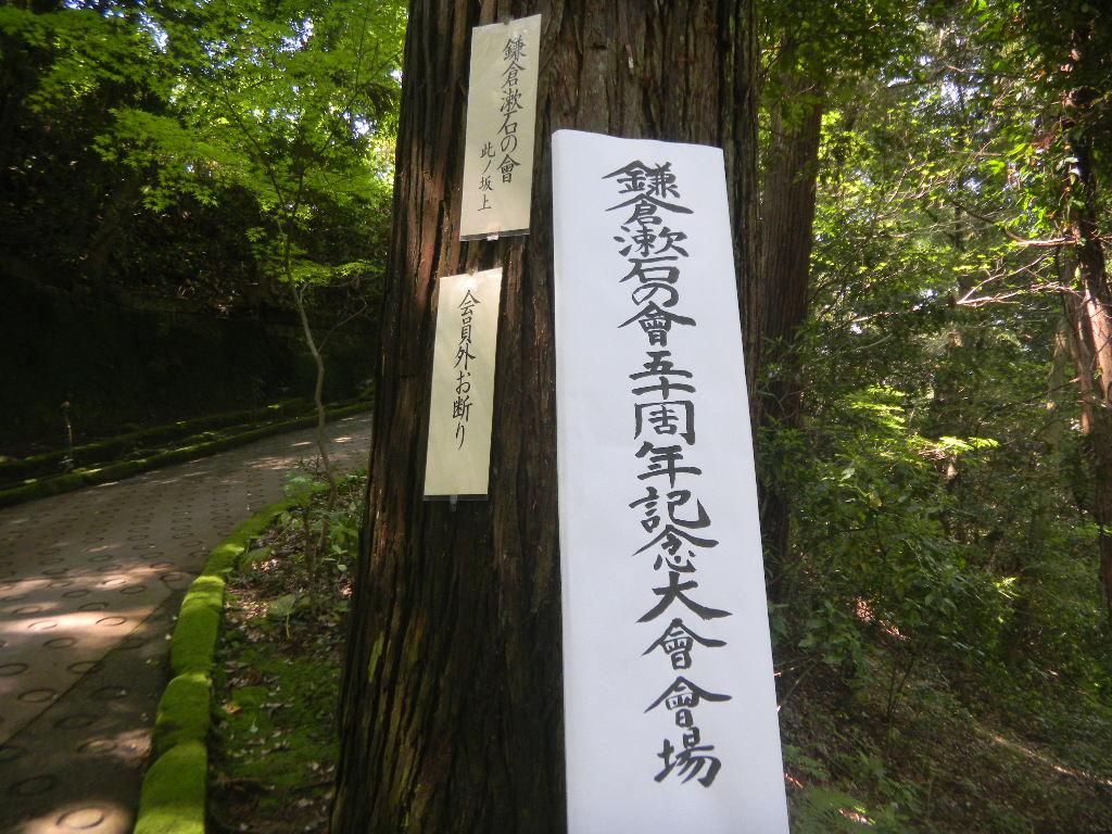 漱石の会_c0195496_1692274.jpg