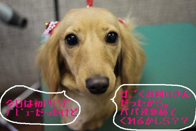 こんばんわぁ~!!_b0130018_22191041.jpg