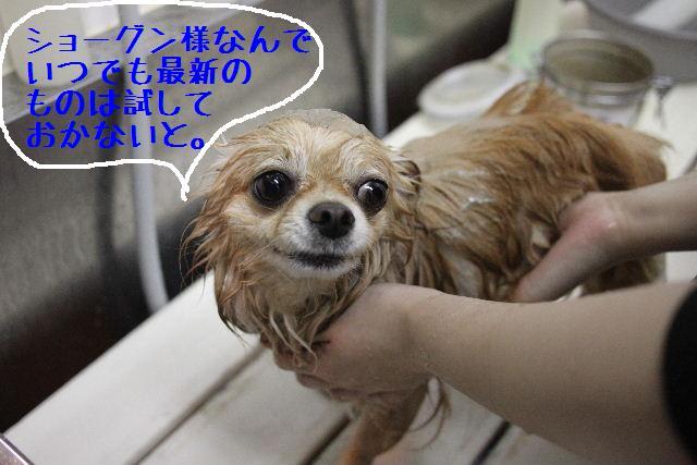 こんばんわぁ~!!_b0130018_22222028.jpg