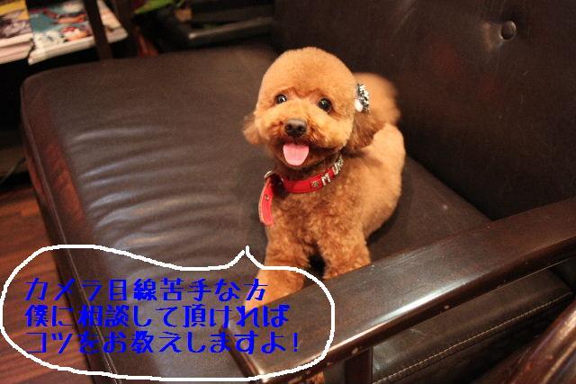 こんばんわぁ~!!_b0130018_22251169.jpg