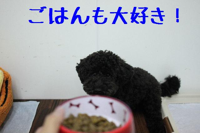 こんばんわぁ~!!_b0130018_22441915.jpg