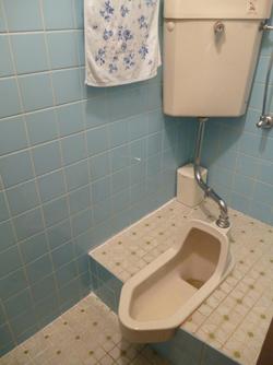 洗面所、トイレリフォーム_e0184941_14293858.jpg