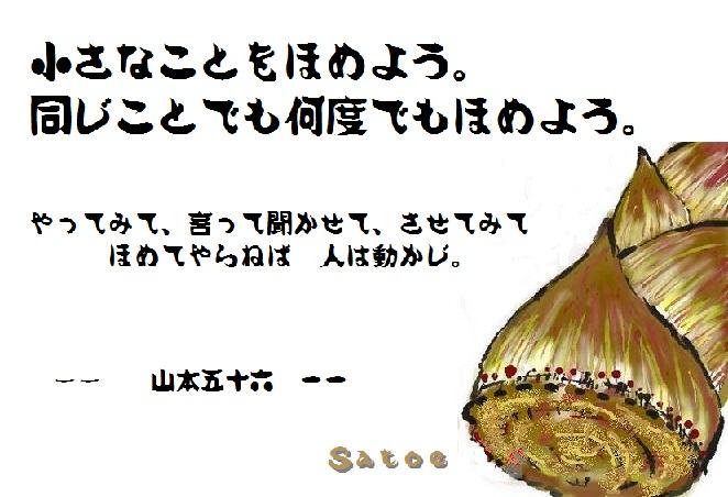d0083472_20133731.jpg