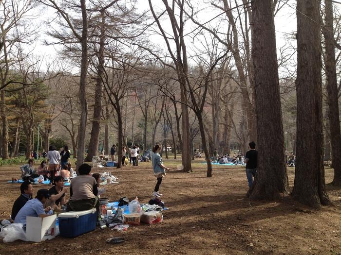 2012.4.28 札幌 円山散歩_b0219778_23262831.jpg