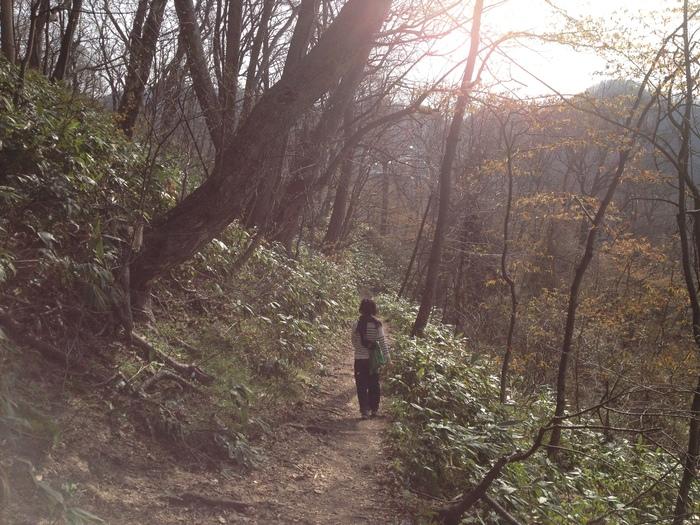 2012.4.28 札幌 円山散歩_b0219778_233839100.jpg