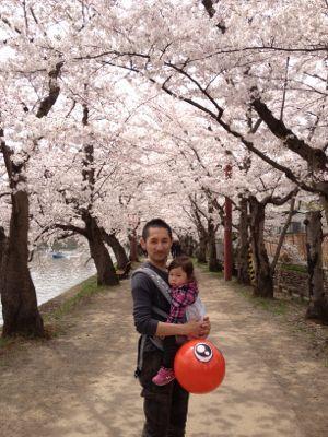 弘前桜祭り_f0166486_7295567.jpg