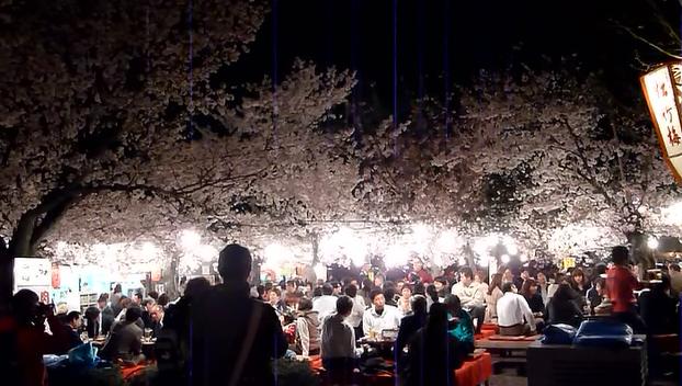京都散策 12_b0093088_9163184.png