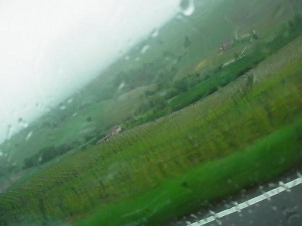 大雨のバローロ_c0222316_16182461.jpg