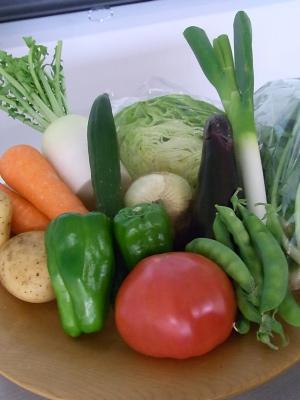 ++大満足続出!野菜教室ミニトマト編++_e0140921_11495350.jpg