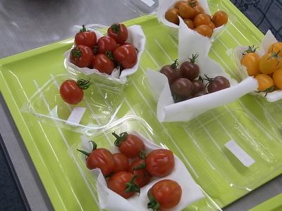 ++大満足続出!野菜教室ミニトマト編++_e0140921_11505047.jpg