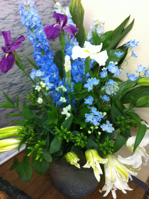 今週のお花とセール情報_a0200423_1643914.jpg