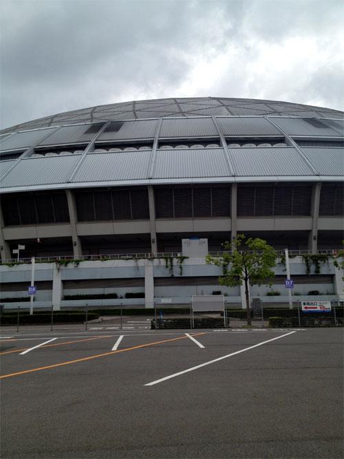 和田選手がいっぱい_b0216341_14175544.jpg