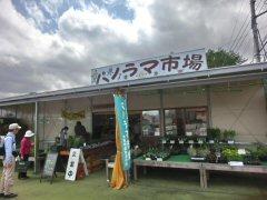 パノラマ市場の農家レストラン_f0019247_1651124.jpg