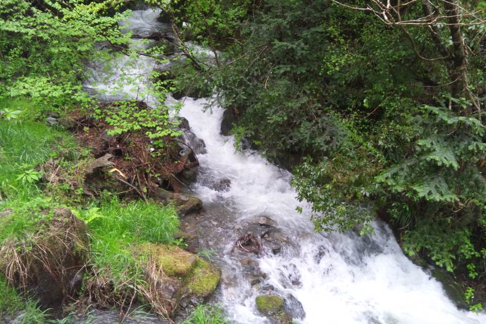 大雨洪水警報_e0241305_1243736.jpg