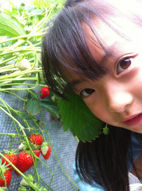 加賀・山中温泉&イチゴ狩り_a0000238_13185417.jpg