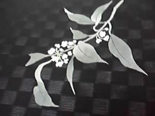 ナタオレの花_f0140343_1620620.jpg