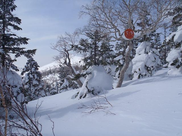 八幡平山スキー_e0264385_23212555.jpg