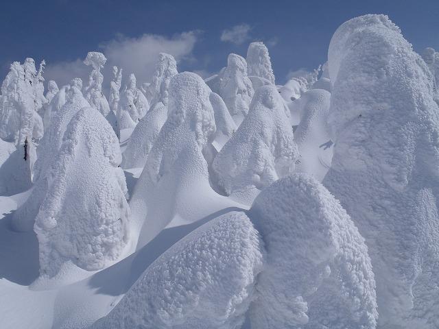 八幡平山スキー_e0264385_2336352.jpg