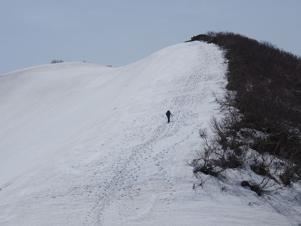 5月1日浜益岳-最終編-_f0138096_15393581.jpg