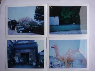 アート塾  ピンホールカメラ・ワークショップ_c0164399_17184115.jpg