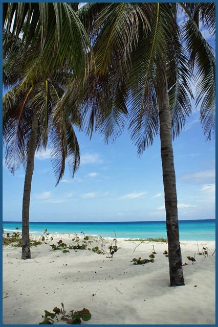 キューバの青い海と空_b0019313_17323964.jpg