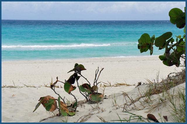 キューバの青い海と空_b0019313_17363670.jpg