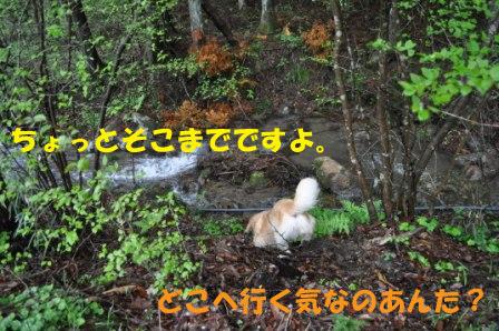 f0176830_19104968.jpg