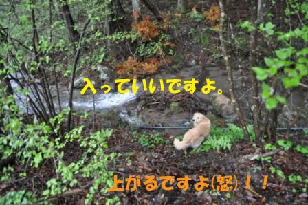 f0176830_19122039.jpg