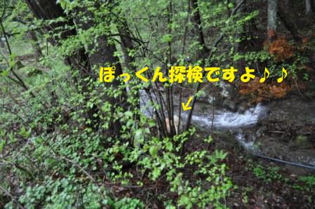 f0176830_1916855.jpg