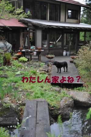 f0176830_1961464.jpg