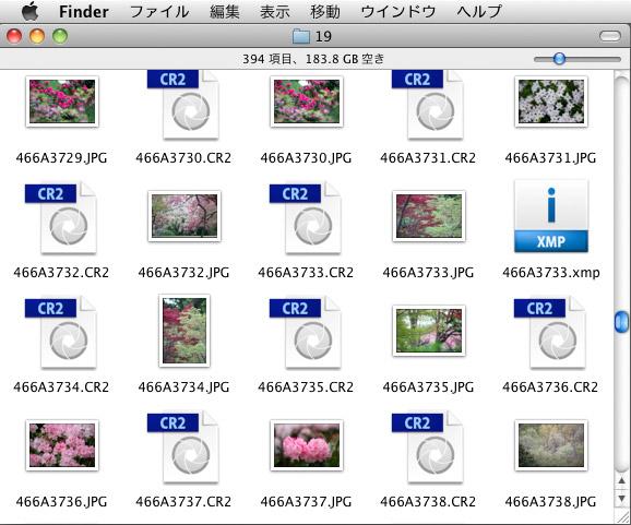 b0229648_13214764.jpg
