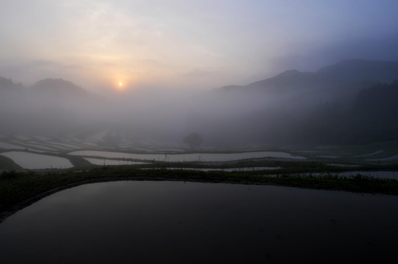 穀雨の候 ~晩春の大山千枚田~ 1_f0018464_8163293.jpg