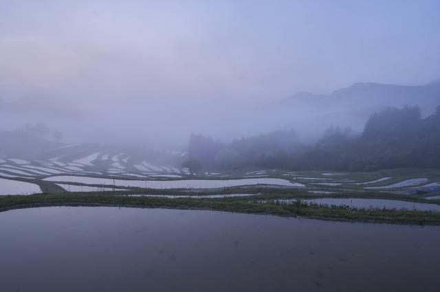 穀雨の候 ~晩春の大山千枚田~ 1_f0018464_863427.jpg