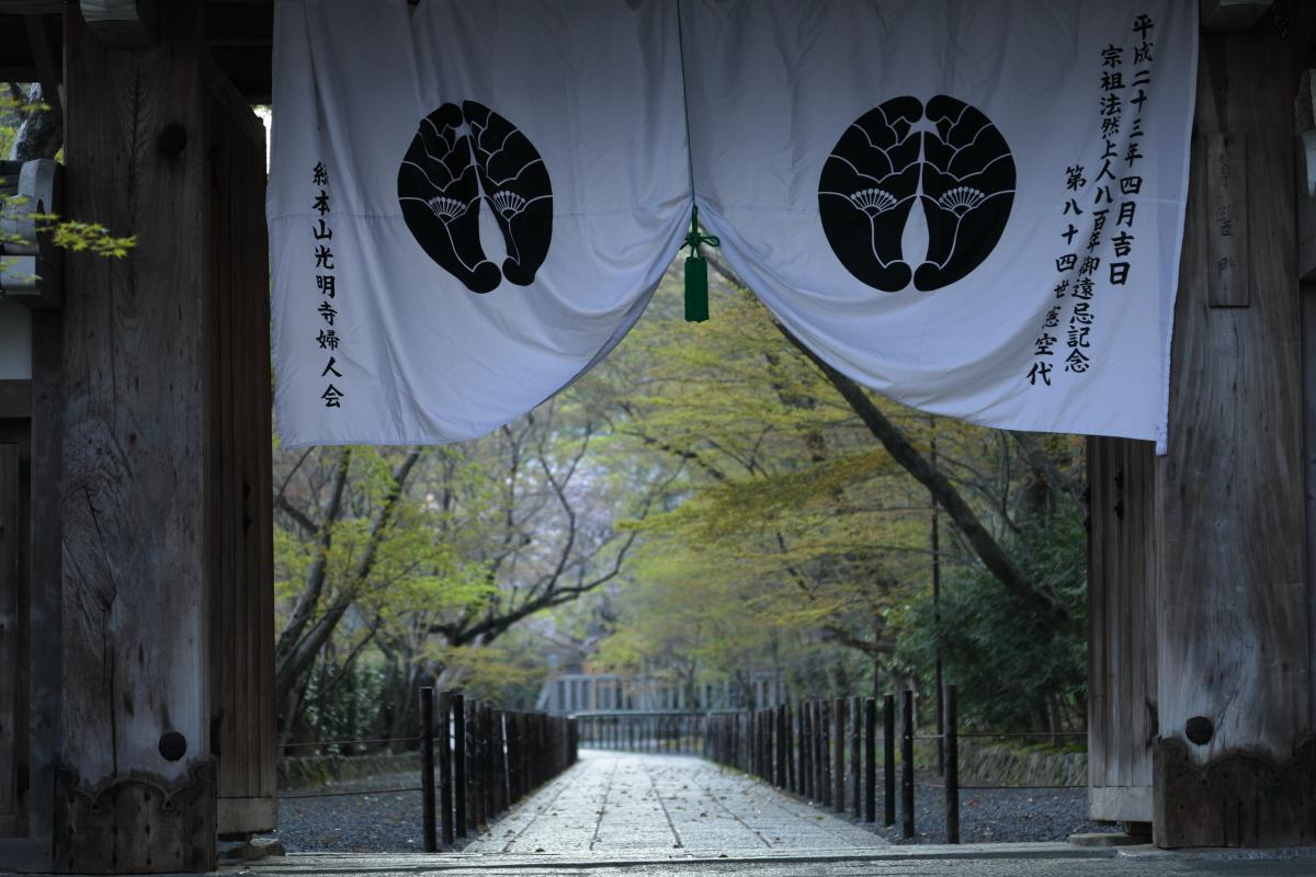 桜 2012  京都 <光明寺>_f0021869_029277.jpg