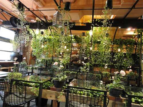 Aoyama Flower Market TEA HOUSEへ行こう!_f0130171_1473095.jpg