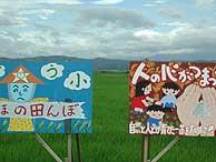 7月12日の田んぼ(緑が丘小・北郷小)_d0247484_2126138.jpg