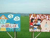 7月26日の田んぼ(緑が丘小・北郷小)_d0247484_213437.jpg