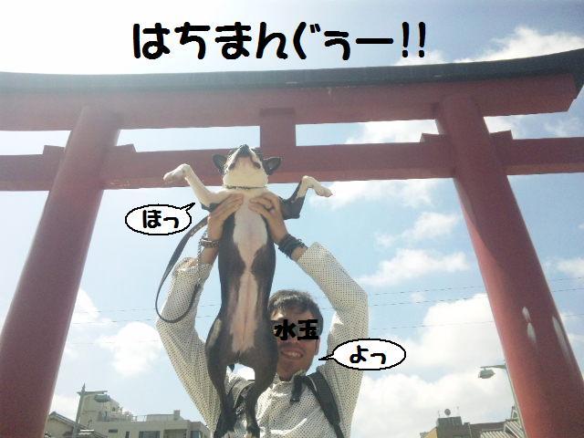 ★鎌倉&江の島散策★_d0187891_102219.jpg