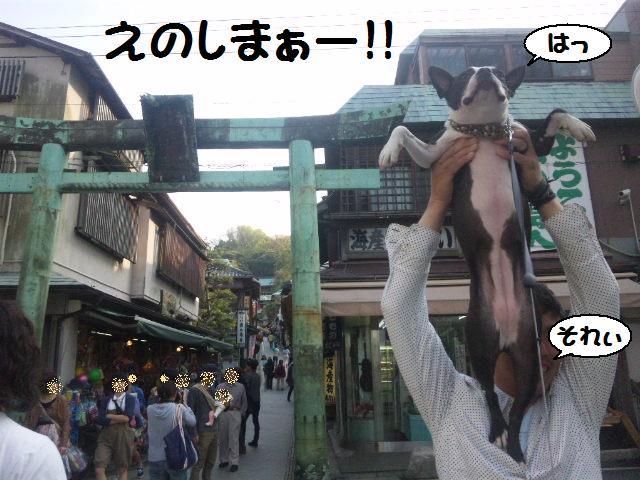 ★鎌倉&江の島散策★_d0187891_1051449.jpg